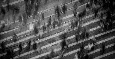 I legami libidici nella psicologia delle masse